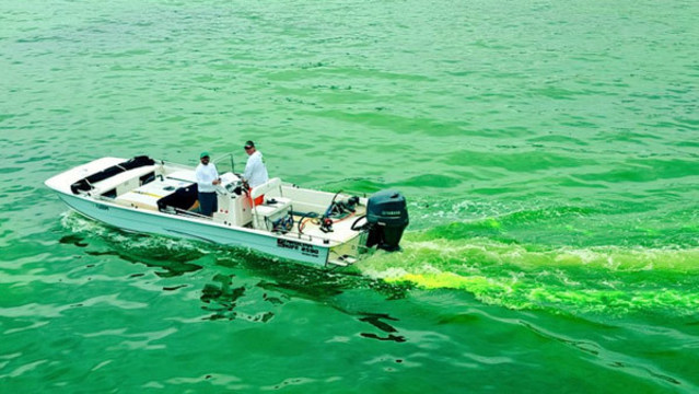Hillsborough River goes green for St. Patrick's Day