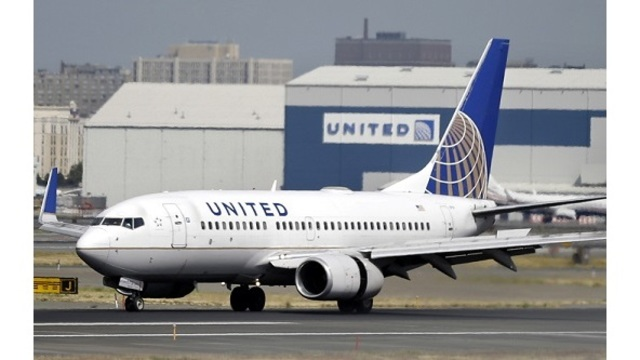 Dog dies on United Airlines flight after worker has it placed in overhead bin