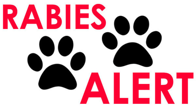 Health Department: Rabies alert issued in Plant City after 7 exposed to rabid cat