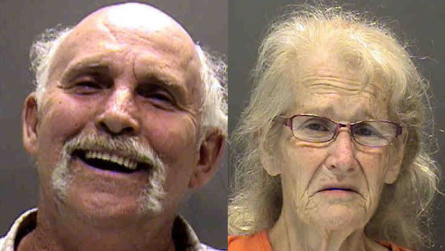 Sarasota couple arrested after blind, deaf dog found chained, covered with maggots