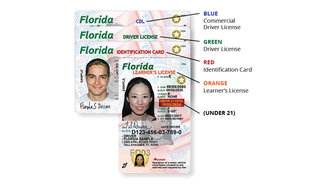 Protection Offer And Florida Cards New More Id Get Look Fraud Licenses
