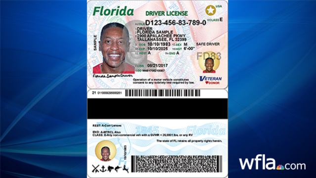 Look Licenses Protection And Offer Id Florida Fraud Get Cards New More