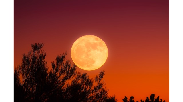 Harvest Moon shines through October skies tonight