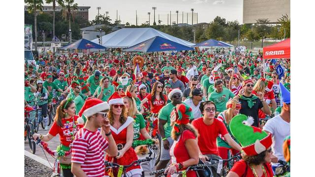 8 fun things to do this weekend in Tampa Bay   Dec. 8-10