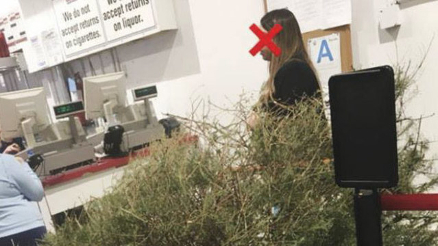 woman returns dead christmas tree to costco in jan for full refund