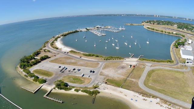 Davis Islands Seaplane Basin Dog Beach Closed Due To Wastewater