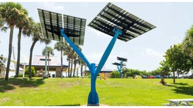 Solar trees to sprout in Florida, turn sun\'s rays into energy