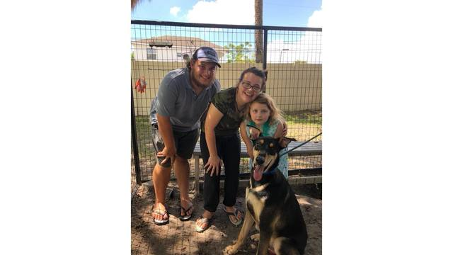 Humane Society of Tampa Bay_1534616994392.jpg.jpg