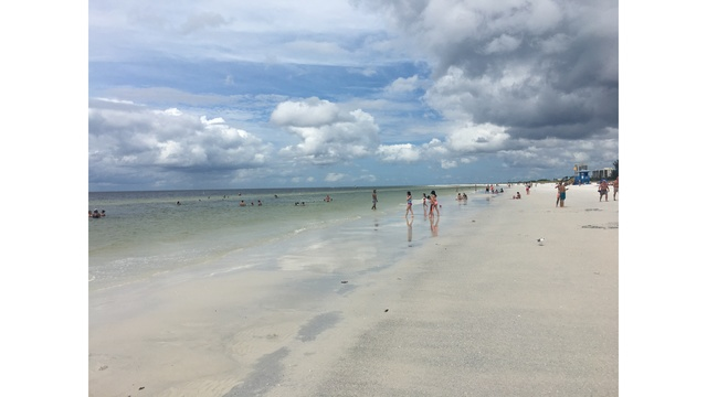 Conditions At Siesta Key Improving After Months Of Red Tide
