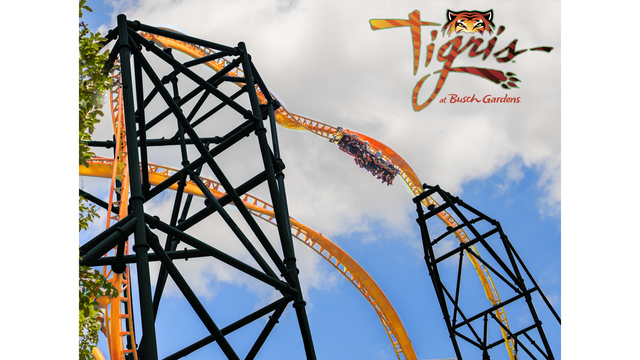 Busch Gardens introduces world's steepest and fastest wooden hybrid coaster