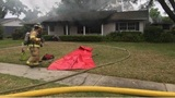 4 cats die in Lakeland fire&#x3b; family displaced