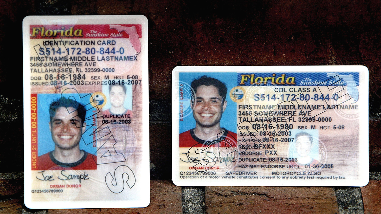 Licenses Drivers May Florida Be Able To Undocumented Immigrants Receive
